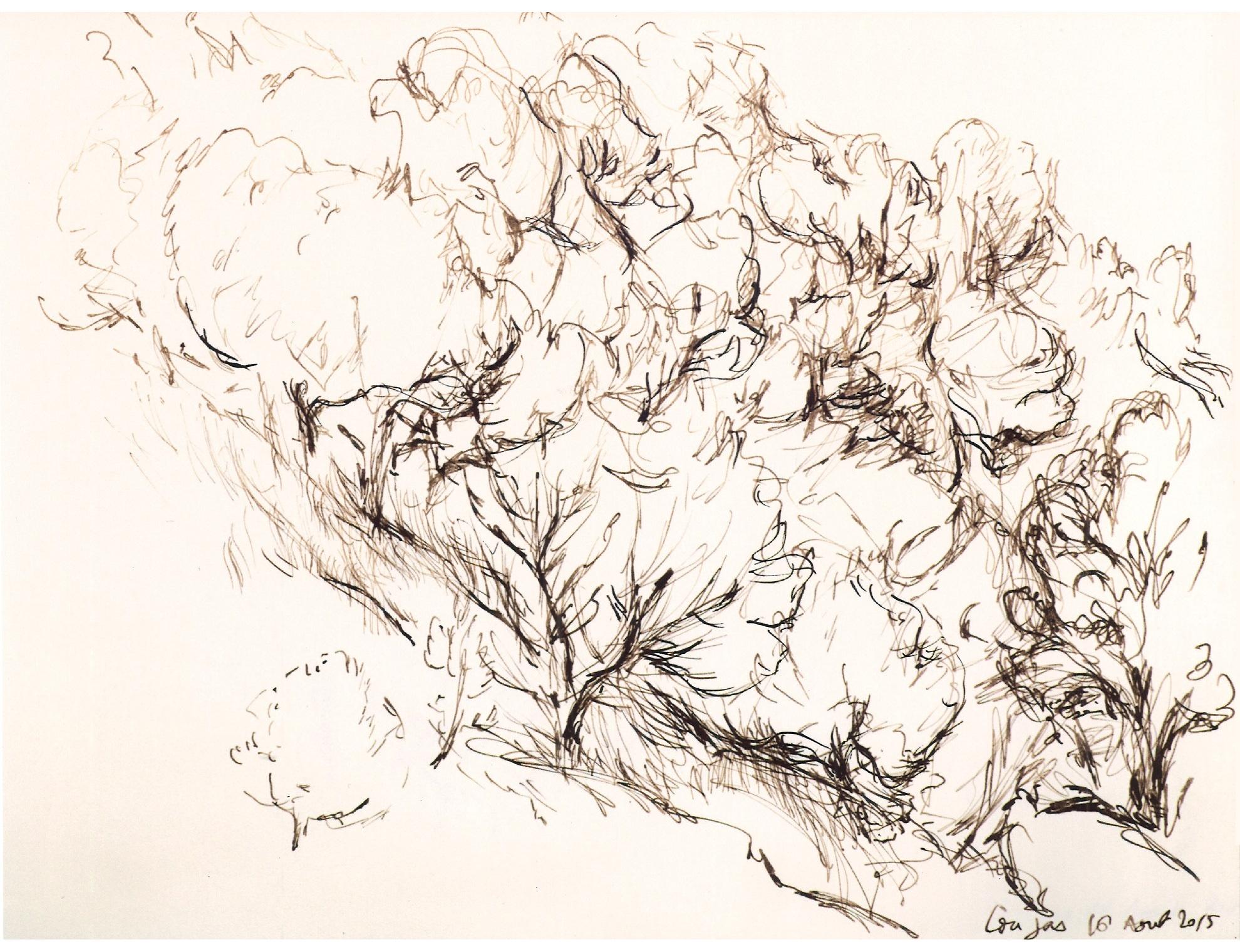 Plume et encre brune, 31 x 23,5 cm, 16 août 2015. Nathalie Garidou