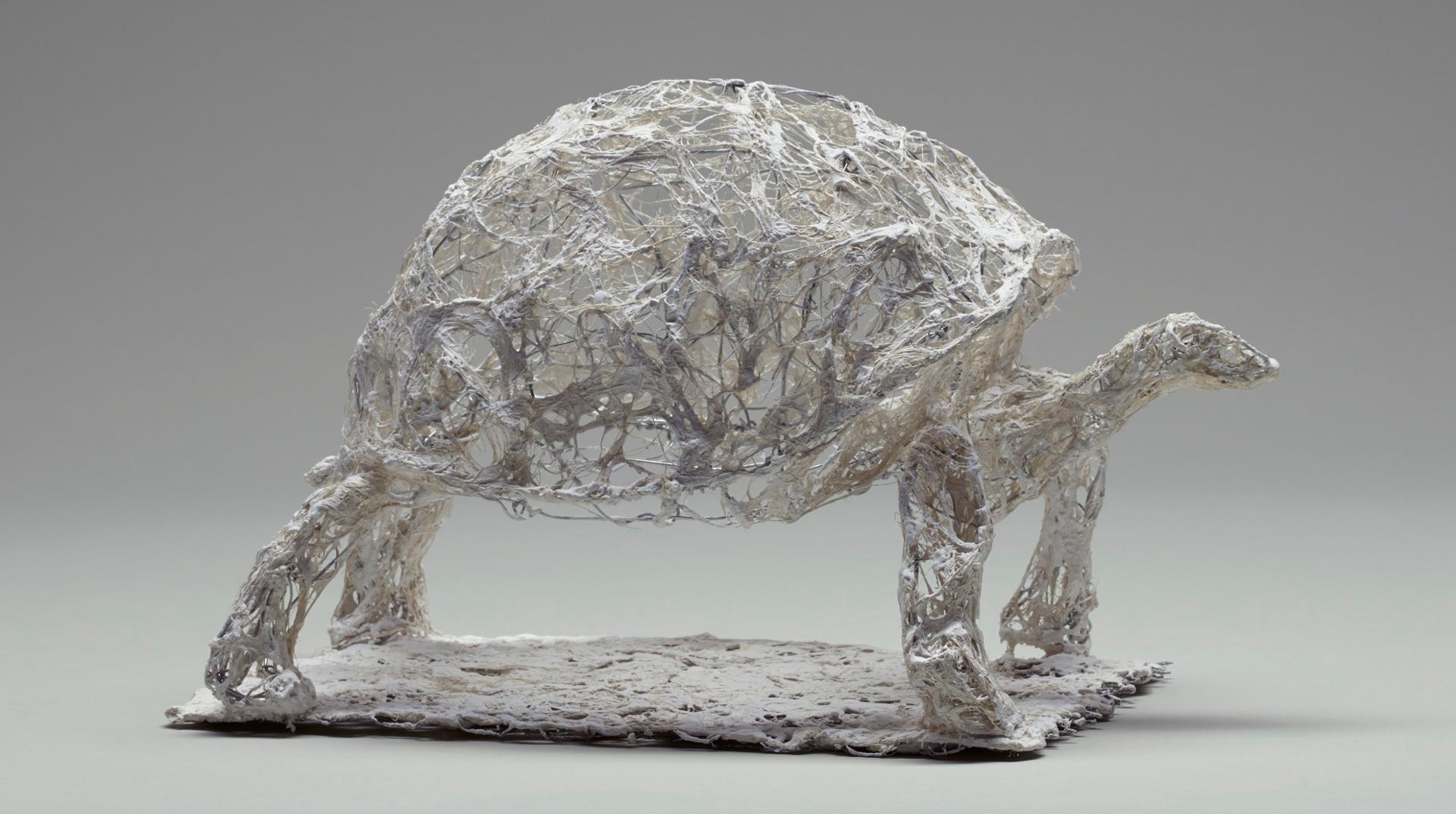 Tortue, 31x20x23cm, fil de fer, plâtre, filasse, 2015. Nathalie Garidou